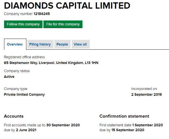 ダイヤモンドキャピタルの登記情報